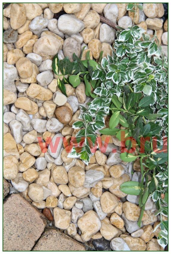 kamienie-w-ogrodzie_06