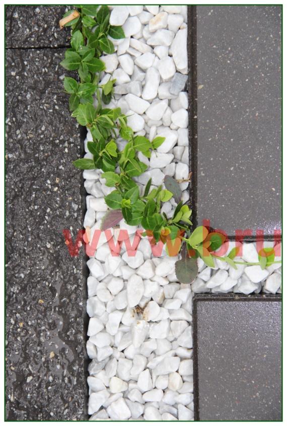 kamienie-w-ogrodzie_12
