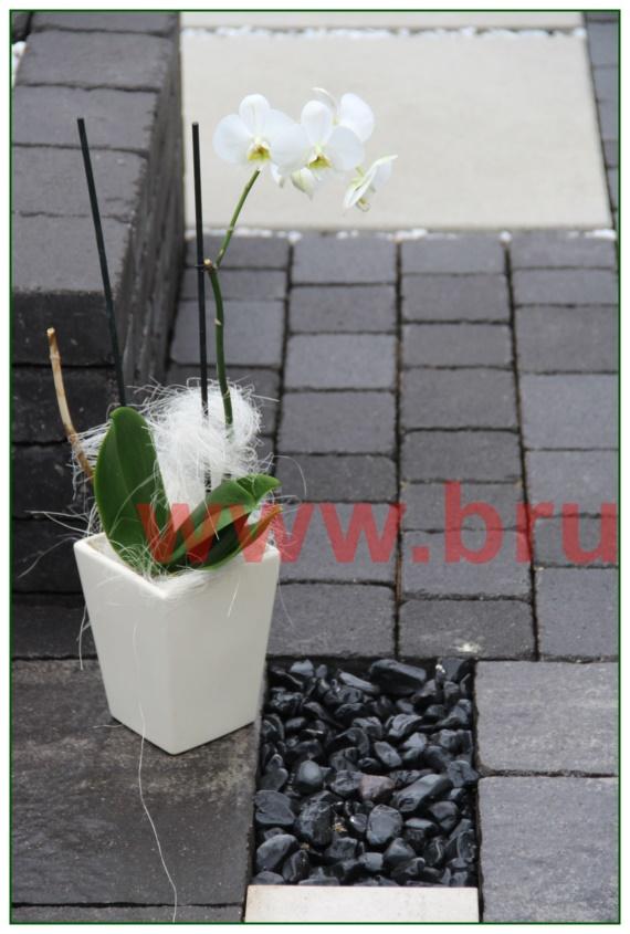 kamienie-w-ogrodzie_50